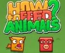 imagen Cómo Alimentar A Los Animales